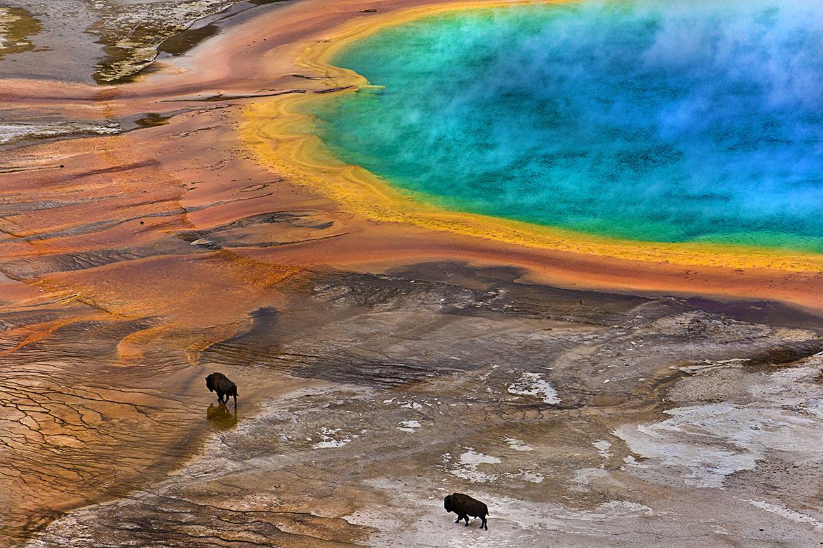 Primatisk källa i Yellowstone (via newscientist)