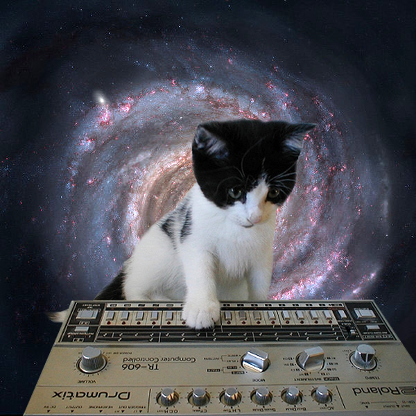 Cats on Synthesizers. In Space.